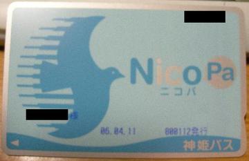 Ca_nicopa